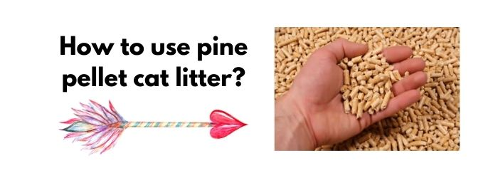 How to use pine pellet cat litter?